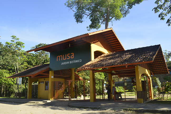 Musa institutional 2015 (english)
